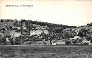 25509 NH, Georges Mills, View from the Lake
