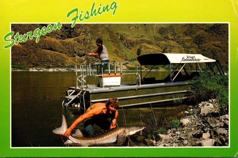 Idaho Snake River Sturgeon Fishing