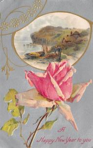 New Year~Catherine Klein Rose~Fisherman Inset~Cottage~Silver Back~Emboss~Winsch