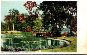 Connecticut Hartford Elizabeth Park Lily Pond Detroit Publishing