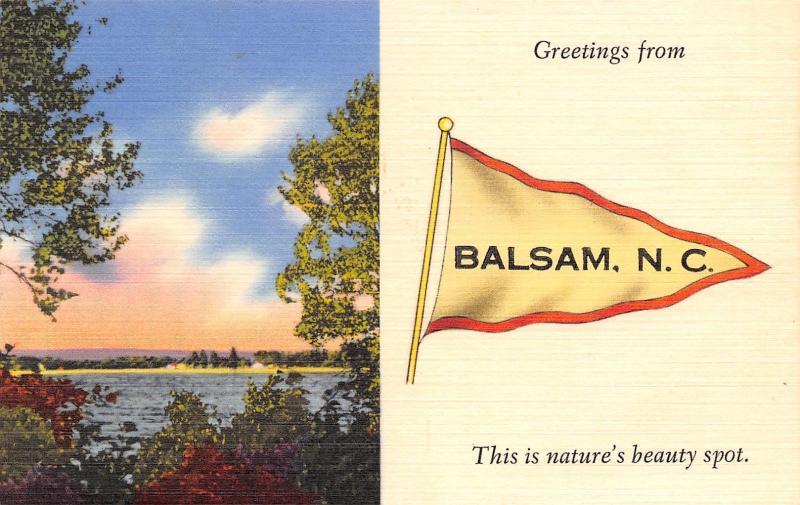 Balsam north carolinanatures beauty spotjones creek1940s linen balsam north carolinanatures beauty spotjones creek1940s linen pennant pc publicscrutiny Image collections