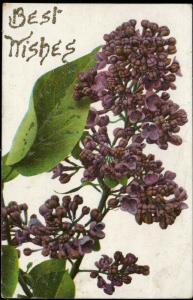 Best wishes Lithophot glitter vintage old 1906
