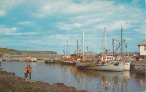 Fishing boats of La Gaspesienne Gaspe, Quebec,  Canada, PU_40-60s