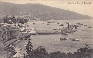 Bay Of Funchal, Boats, Madeira, Portugal, 1900-1910s