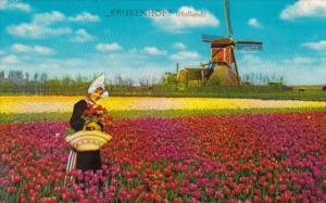 Holland Keukenhof Tulip Time Land Of Flowers and Windmills