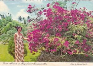 Guam Beautiful Guamanian Girl With Magnificent Bougainvillea