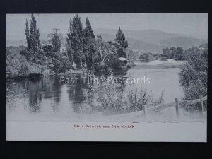 Australia TASMANIA near NORFOLK River Derwent c1905 by J. Walsh & Sons Ltd