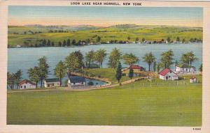 New York City Loon Lake Near Hornell