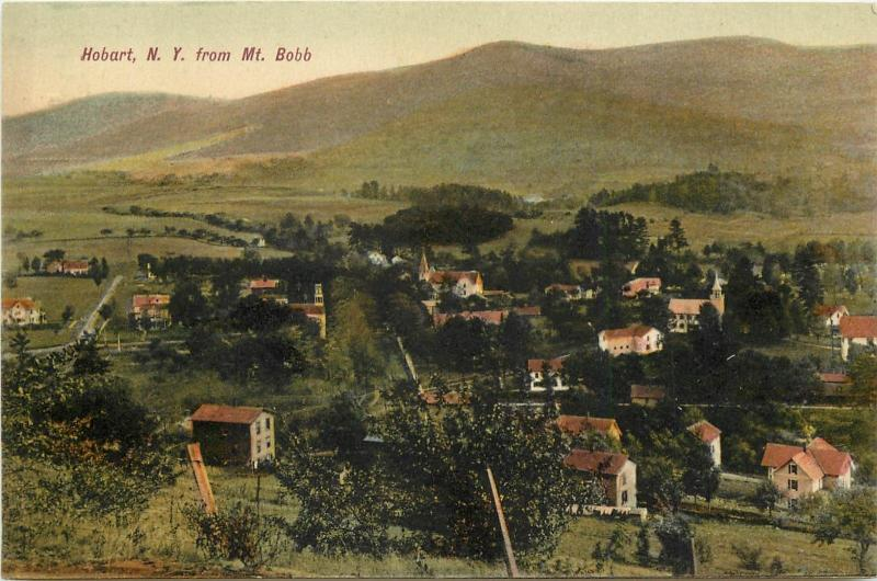 Chromograph Postcard; Town View Hobart NY from Mt. Bobb, Delaware Co. Unposted
