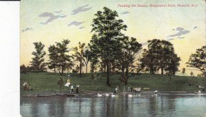 NEWARK  , New Jersey , 1900-10s ; Feeding the Swans, Weequahic Park