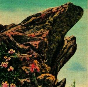Blowing Rock North Carolina NC View of blowing rock 1939 Vtg Linen Postcard