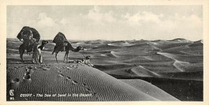 Vintage Egypt Postcard The Sea of Sand Desert Camel Panoramic Bookmark Style BE3