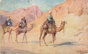 African types and scenes Raphael Tuck postcard Camels in the desert