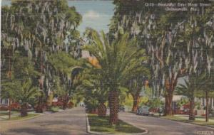 Florida Gainesville Beautiful East Main Street 1950 Curteich