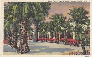 CORPUS CHRISTI , Texas , 1930-40s ; Palm Grove , North Beach