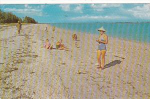 Florida Shelling On Captiva ans Sanibel Islands 1973