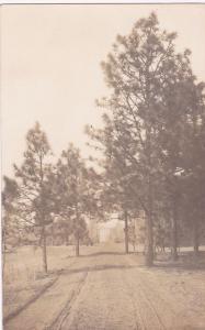 RP: SOUTHERN PINES , North Carolina, 1912 ; Dirt Road