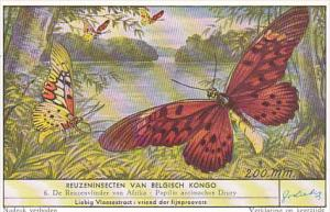 Liebig S1644 Large Insects Of The Belgian Congo No 6 Butterfly