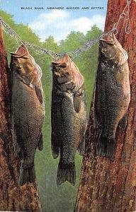 Black Bass Fishing 1985