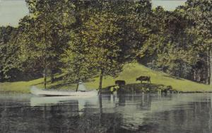 Canoe, Cows on The Knoll, Lake Brady, Portage County, Ohio, 00-10´s