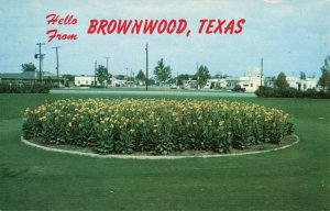 Postcard Traffic Circle Brownwood Texas