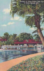 Florida Silver Springs Starting On Glass Bottom Boat Trip 1952 Curteich