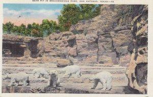SAN ANTONIO, Bear Pit In Brackenridge, Texas, 30-40s