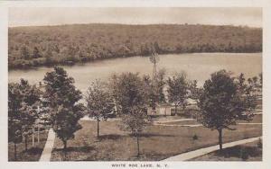 White Roe Lake, New York, 00-10s