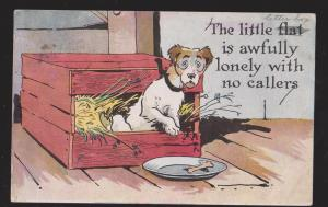 Comic Postcard - Lonely With No Callers - Dog In Box - Used 1916