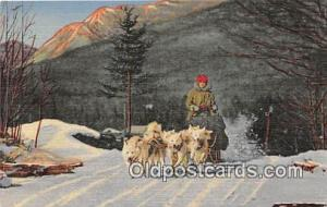 Dog Drawn Postcard North Woodstock, NH, USA Team of Ed Clark's Eskimo Sled