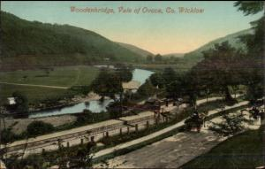 Woodenbridge Vale of Ovoca Co. Wicklow c1910 Postcard