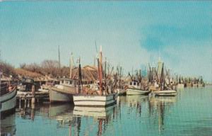 Texas Corpus Christi Shrimp Boats Along The Coast