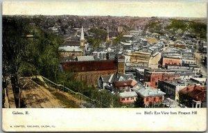 Galena, Illinois Postcard Bird's-Eye View from Prospect Hill c1910s Curteich