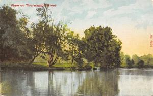Forest Hills to Hastings MI Middleville~Trees Along the Thornapple River c1910