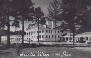 North Carolina Raleigh Scandia Village In the Pines
