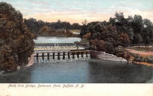 Buffalo~Delaware Park~Ladies on North End Bridge~Spillway~Steel Girders~1905 PC