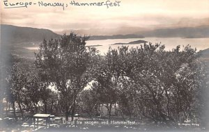 Utsigt fra skogen ved Hammerfest United Kingdom, Great Britain, England Unused