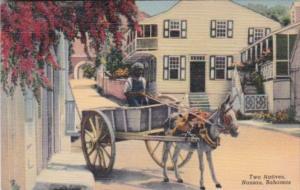 Bahamas Nassau Two Natives Young Boy & Donkey Cart 1946 Curteich