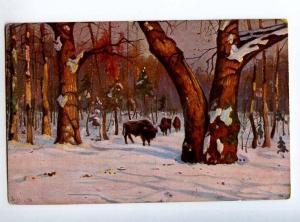 224636 RUSSIA Brovar Bialowieza Forest Richard #505 HUNTING