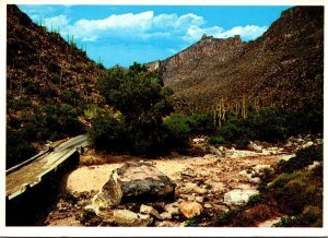 Arizona Tucson Sabino Canyon