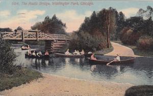 Rustic Bridge , Washington Park , CHICAGO , Illinois , 00-10s