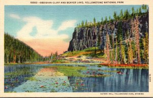 Yellowstone National Park Obsidian Cliff and Beaver Lake Curteich