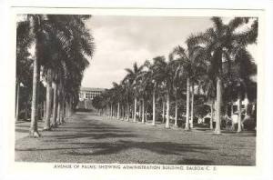 RP Avenue of Palms, Showing Administration Building, Balboa, C.Z., Panama, 30...
