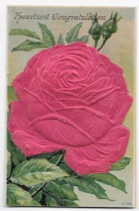 Heartiest Congratulations Lrg Silk Covered Red Rose Postcard