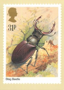 British stamp on Postcard Insects Stag Beetle design Gordon Beningfield