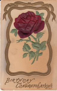 Birthday Congratulations - 3-D Rose
