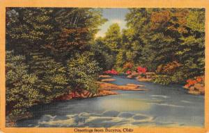 Bucyrus Ohio Greetings From river view linen antique pc Z45765
