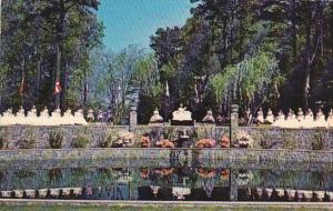 Azalea Festival Botanical Gardens Norfolk Virginia 1967
