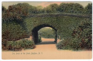 Buffalo, N.Y., Ivy Arch at the Park - Rotograph