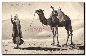 Old Postcard Camel In The Desert Prayer